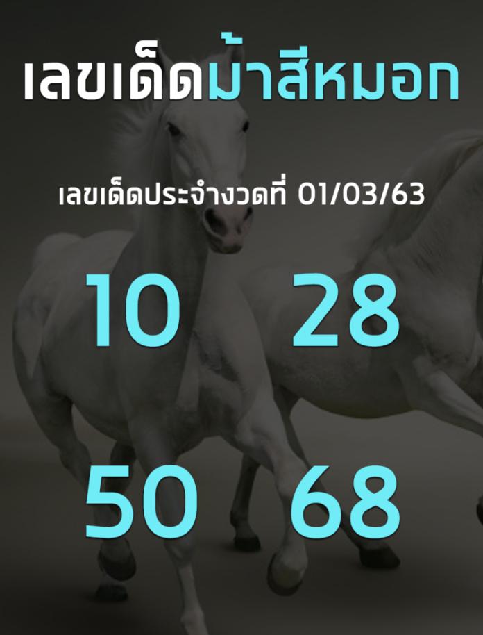 เลขเด็ดเลขดังม้าสีหมอก งวดประจำวันที่ 1 มีนาคม 2563